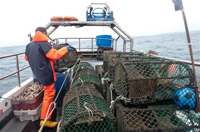Stacking Lobster Pots as they are hauled.